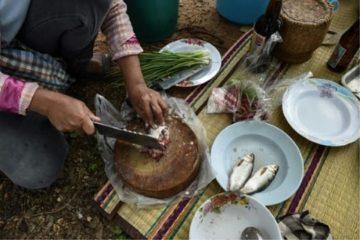 chế biến món ăn từ cá