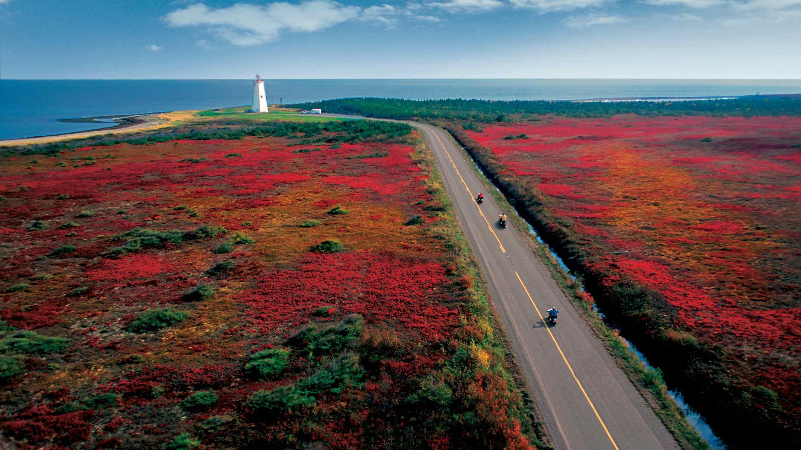 Du học Canada tại New Brunswick