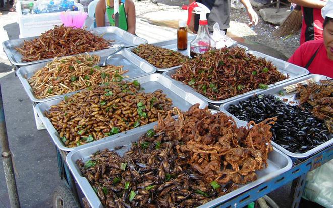 Món ăn kinh dị Thái Lan 4