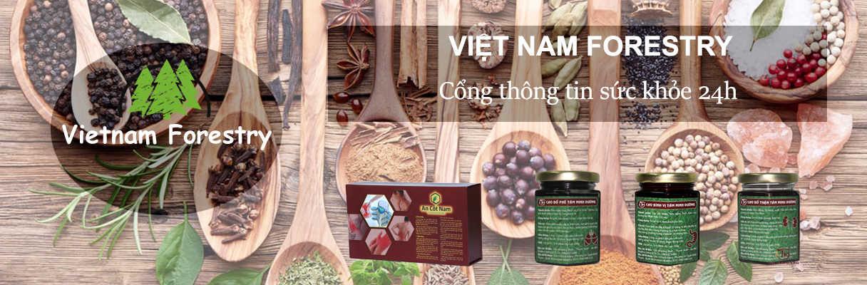 Việt Nam Forestry Blog