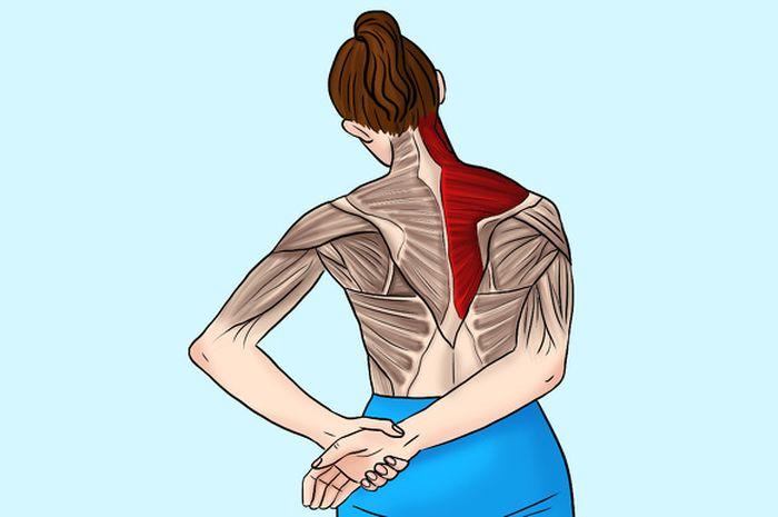 Thực hiện bài tập duỗi cơ này có liên quan trực tiếp đến cả cổ và vai gáy