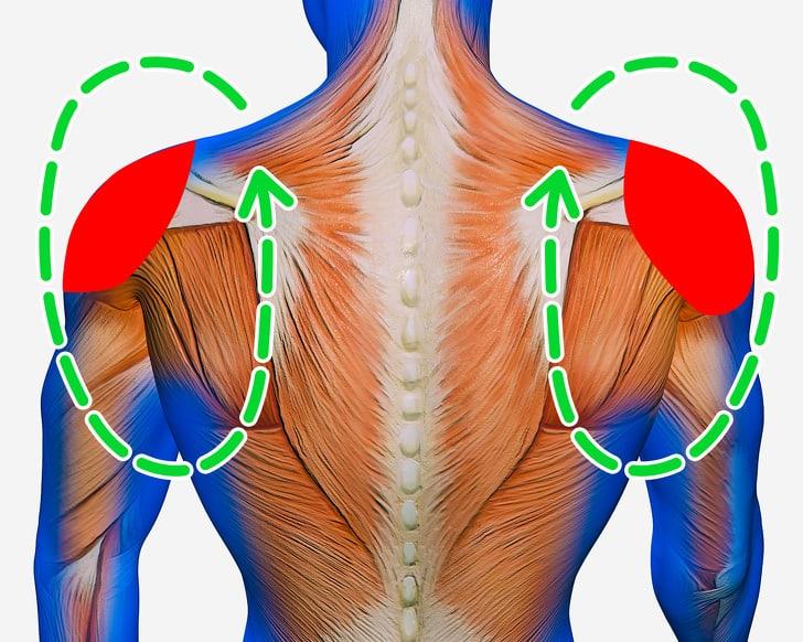 Bài tập này sẽ giúp các cơ xung quanh vai được thả lỏng và thư giãn rất tốt